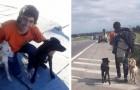 Er findet 2 verlassene Hunde, aber kein Bus will sie mitnehmen: Deshalb läuft er 1.400 km zu Fuß, um sie nach Hause zu bringen.