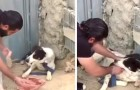 En hund övergavs och lämnades fastbunden, mannens gest kan lära oss alla någonting