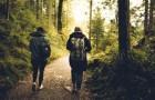 Il Cammino dei Briganti: un'esperienza unica per godersi la natura e ritrovare se stessi. Ecco tutti i dettagli