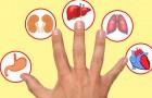 Selon une tradition japonaise, chaque doigt correspond à un organe : voici ce qui se passe si vous appuyez dessus