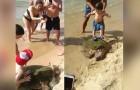 Questo raro esemplare di tartaruga è stato trascinato sulla riva per fare le foto con i bagnanti