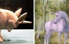 Les licornes ont réellement existé et ont foulé le sol il y a 29 000 ans