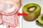 10 effectieve voedingsmiddelen om bloedarmoede te bestrijden... zonder je toevlucht te nemen tot vlees