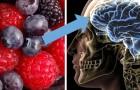 Als je een brein wilt hebben dat altijd jong en actief is, zijn hier 8 voedingsmiddelen die je niet mag verwaarlozen