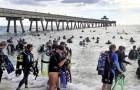 Deze 633 duikers hebben geschiedenis geschreven door de grootste onderwaterreiniging ooit uit te voeren