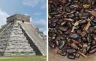 Questa antica civiltà del Sud America utilizzava la cioccolata come moneta di scambio commerciale
