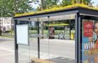 Pays-Bas : les toits des arrêts de bus sont recouverts de plantes pour attirer les abeilles et purifier l'air