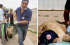 Este veterinário herói salva os animais em dificuldade nas zonas de guerra de todo o mundo