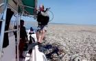 In der Karibik gibt es die größte Plastikinsel der Welt und ihre Bilder sind beängstigend