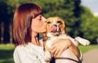 Alcune persone amano di più i propri cani che gli altri esseri umani: uno studio spiega il perché
