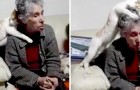 A grandmother is diagnosed with senile dementia and her cat tries, in her own way, to