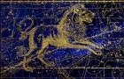 Här är alla drag hos människor födda i Lejonets tecken - starka människor som blir dina vänner för livet!