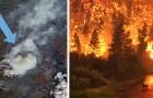 Milieuramp in het Noordpoolgebied: onblusbare branden verwoesten meer dan 800 duizend hectare bos
