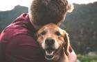 I possessori di cani tendono ad essere più