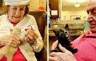 Dans cette clinique, les patients retrouvent la mémoire en prenant soin de chatons nouveau-nés