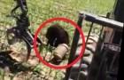 Un courageux bûcheron sauve un ours, regardez comment à la minute 1:30