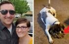 Il pompiere in missione invia a casa la sua maglietta: la reazione del cane fa commuovere tutta la famiglia