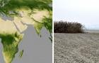 Da oltre 20 anni la Terra ha smesso di diventare verde: la desertificazione avanza sempre di più
