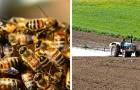 Le Brésil a perdu un demi-milliard d'abeilles en seulement 3 mois : la tuerie liée aux pesticides n'en finit plus