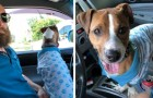 Een man vindt een verdwaalde hond die een pyjama draagt: er ontstaat onmiddellijk een speciale relatie tussen de twee