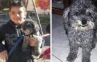 Este menino autista oferece a sua bicicleta como recompensa para quem encontrará Tito, o seu amado cachorrinho