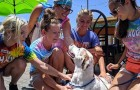 Their dog has a terminal illness and the family gives him the best weekend of his life
