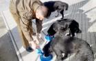 Este gentil policía transcurre parte de su tiempo libre regalando comida y cuidados a los perros callejeros