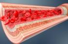 Er is een hydrogel ontdekt die gescheurde bloedvaten kan repareren en bloedingen kan stoppen: de eerste tests zijn bemoedigend