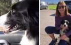 Diese Frau kündigt, um nach ihrem verlorenen Hund zu suchen und findet ihn nach 57 Tagen wieder