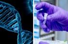 Roma: un test del sangue potrebbe catturare le alterazioni del DNA prima che si manifesti il cancro