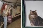 Nella metro di Londra sostituiscono le solite pubblicità con foto di gattini in cerca di una nuova casa