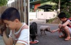 At only 9 years of age, he used his savings to feed stray puppies and now he runs an animal shelter