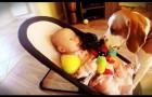 Este cachorro rouba o brinquedo do bebê, mas se arrepende e faz algo muito fofo para remediar