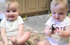 You Will not be able to resist these twins mimicking daddy's sneeze