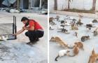 Este homem entra na zona de guerra para salvar os gatos que as famílias que fugiram tiveram que abandonar
