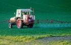 Die europäische Union erklärt: Glyphosat sei nicht krebserregend