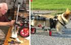 Um veterinário aposentado de 90 anos faz cadeiras de rodas para animais deficientes: