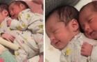 Parents film their twins who sleep tenderly embraced a few days after their birth