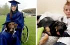 18 cani coraggiosi le cui gesta eroiche hanno salvato la vita dei loro padroni
