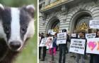 La California è il primo Stato americano a vietare la vendita di prodotti ricavati da pellicce animali