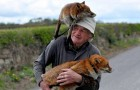 This animal-lover saves two foxes found abandoned by the roadside and becomes their best friend