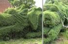 Den här pensionären har skapat en gigantisk drakformad häck, ett arbete som tagit honom 13 år att slutföra