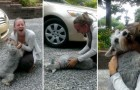 She returns home after two years and her dog faints for the joy