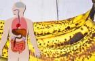 Aunque si está manchada, la banana puede revelarse una potente aliada para nuestro bienestar