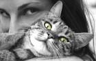 De trillingen die worden veroorzaakt door het spinnen van katten hebben therapeutische effecten: een onderzoek verklaart de voordelen