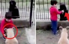 This 6-year-old boy gives water to both his pet dog and a stray dog ​​outside in the yard from the same bowl