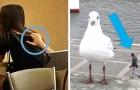12 foto ingannevoli che mostrano persone e cose dalle angolazioni più particolari ed impensabili