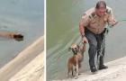 Ce policier a sauvé un chien errant qui n'arrivait pas à sortir d'un canal