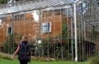 Ce couple a construit une serre autour de leur maison, pour vivre dans le chaud et cultiver de la nourriture toute l'année