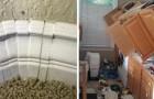 30 foto di lavori domestici così disastrosi che farebbero inorridire ogni professionista